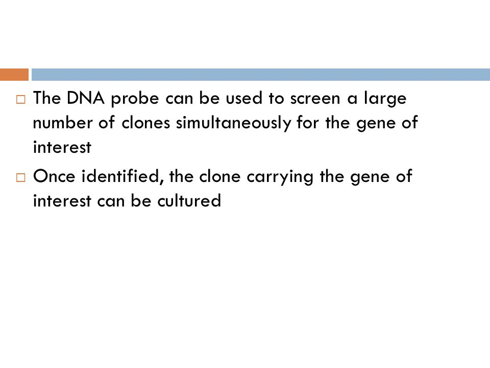 The DNA probe can be used to screen a large number of clones simultaneously for the gene of interest