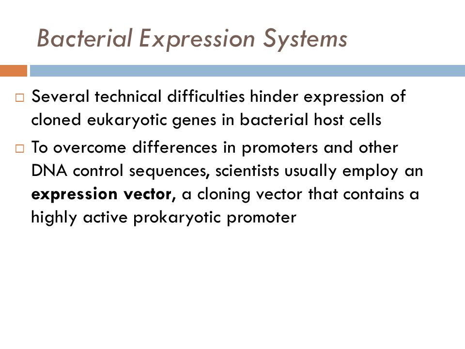 Bacterial Expression Systems