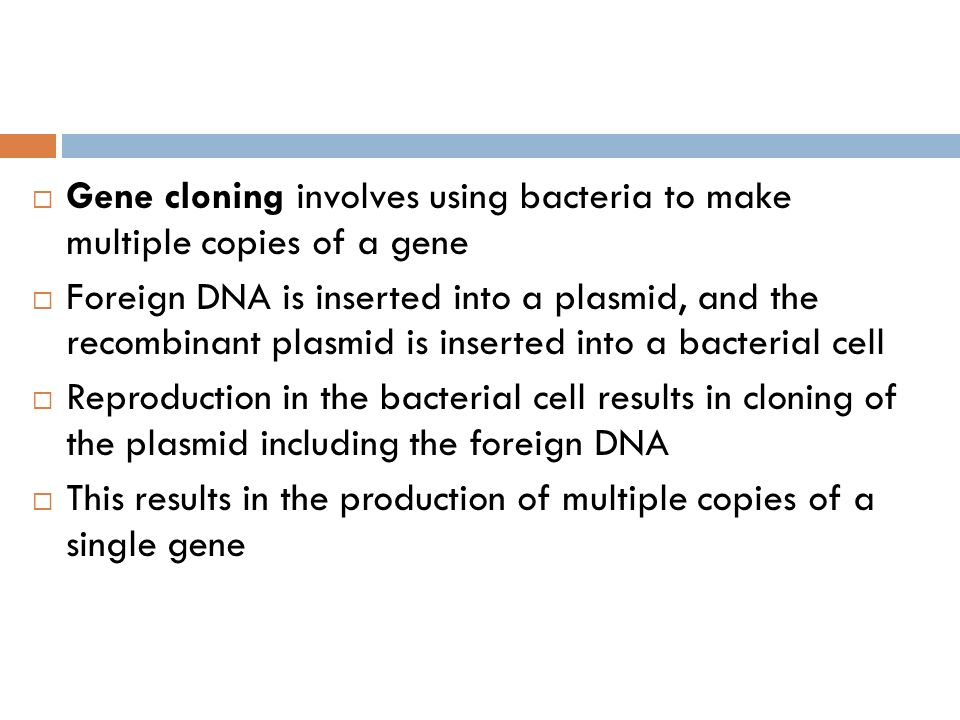 Gene cloning involves using bacteria to make multiple copies of a gene