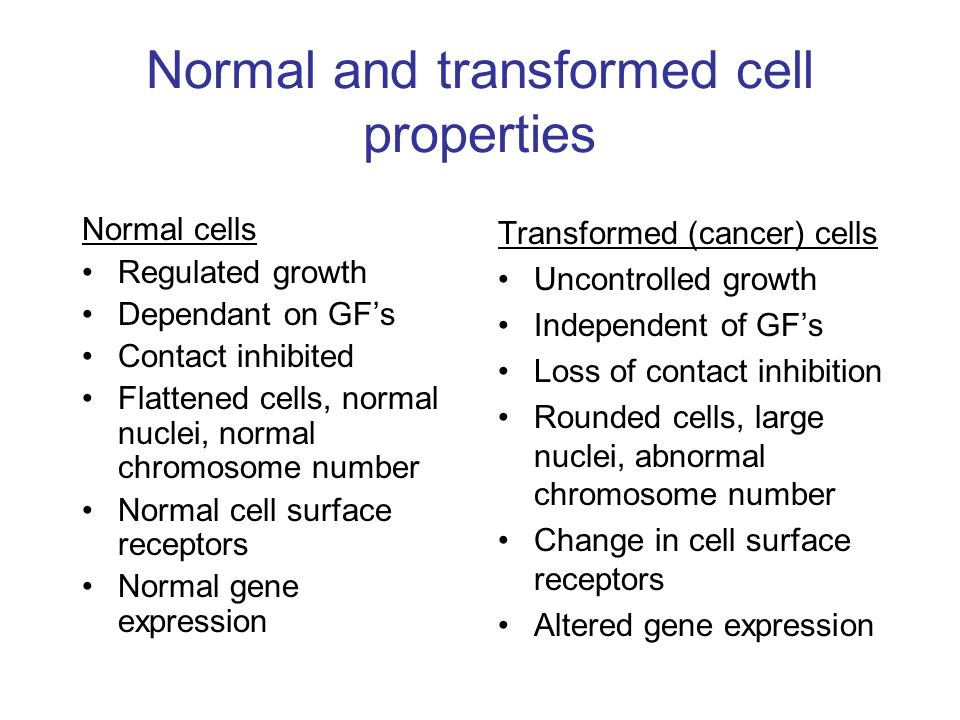 normal cells vs transformed cells Interactions between normal and transformed epithelial cells in drosophila and mammals, except in  where hematopoietic stem and precursor cells were used for analyses mutations phenomena.