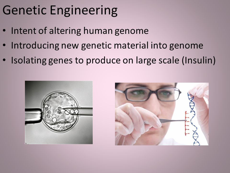 an analysis of the genetic engineered humans Genetic engineering is one of the most promising technologies can we one   this was the first case of a human germline genetic modification the babies   griffiths, anthony j f et al an introduction to genetic analysis (1996) lemoine .