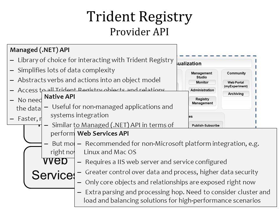 Trident Registry Provider API