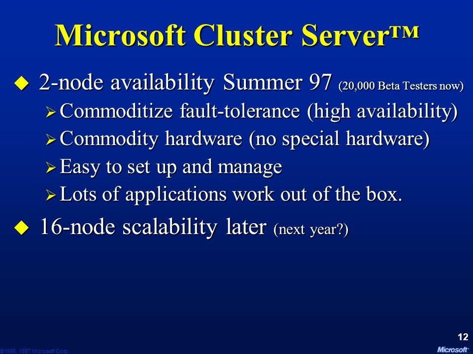 Microsoft Cluster Server™