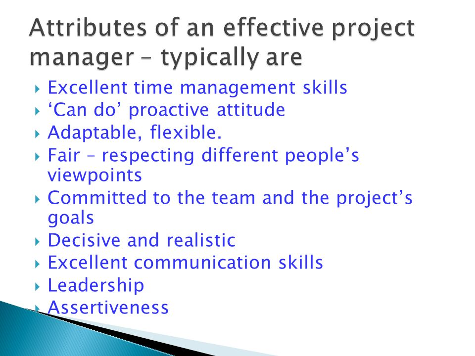 Ten Characteristics of Successful Project Teams - Part 1