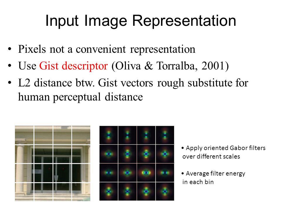 Input Image Representation