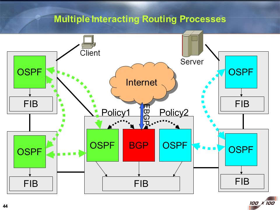 Multiple Interacting Routing Processes
