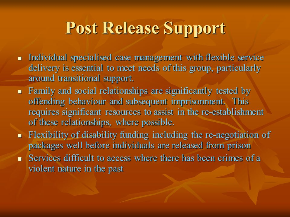 Post Release Support