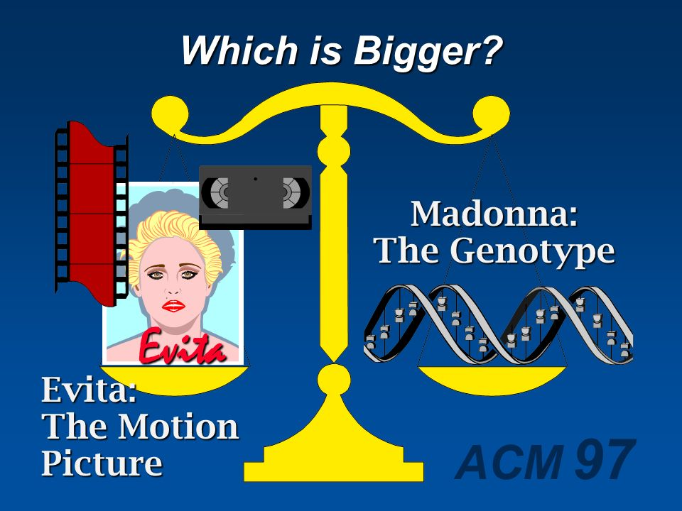 Which is Bigger Evita Evita: The Motion Picture Madonna: The Genotype