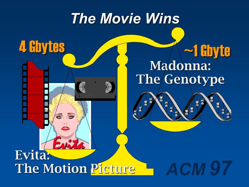 Evita 4 Gbytes ~1 Gbyte The Movie Wins Madonna: The Genotype Evita: