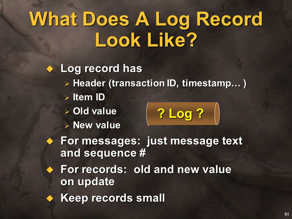 What Does A Log Record Look Like