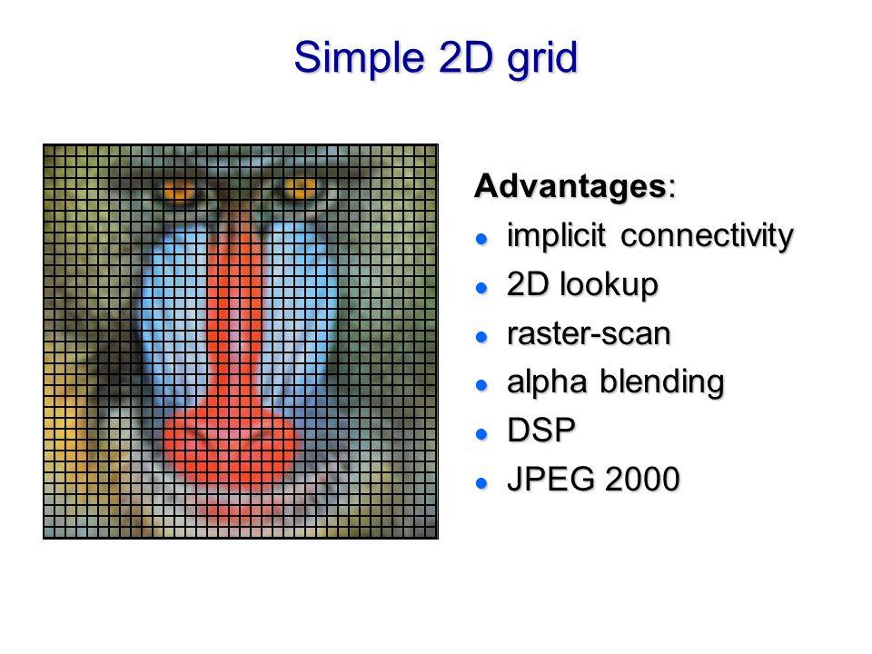 Simple 2D grid Advantages: implicit connectivity 2D lookup raster-scan