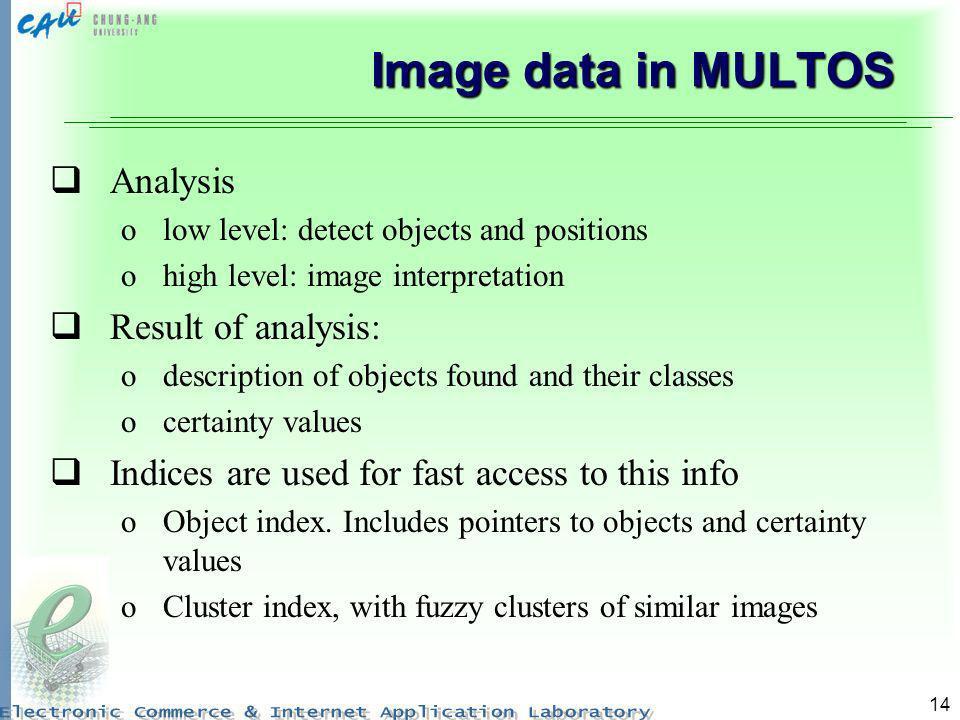 Image data in MULTOS Analysis Result of analysis: