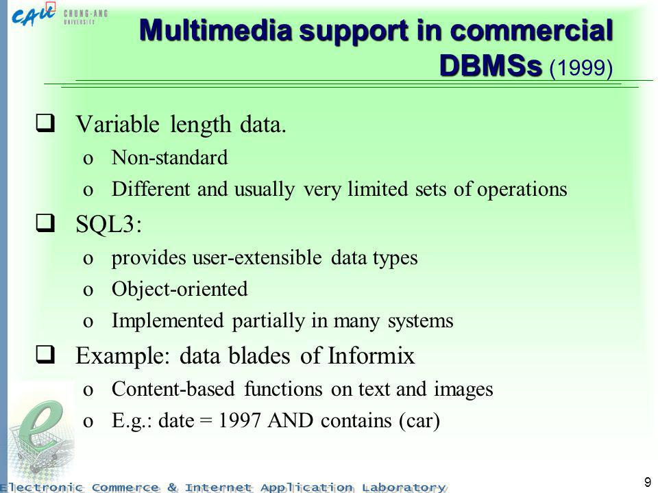 Multimedia support in commercial DBMSs (1999)