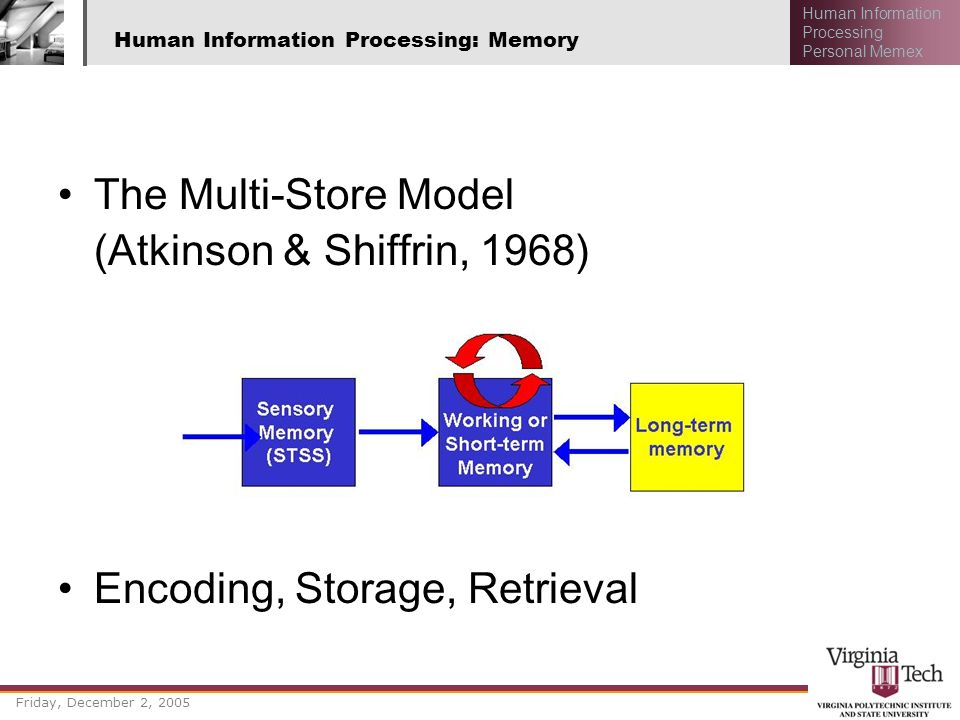 Human Information Processing: Memory