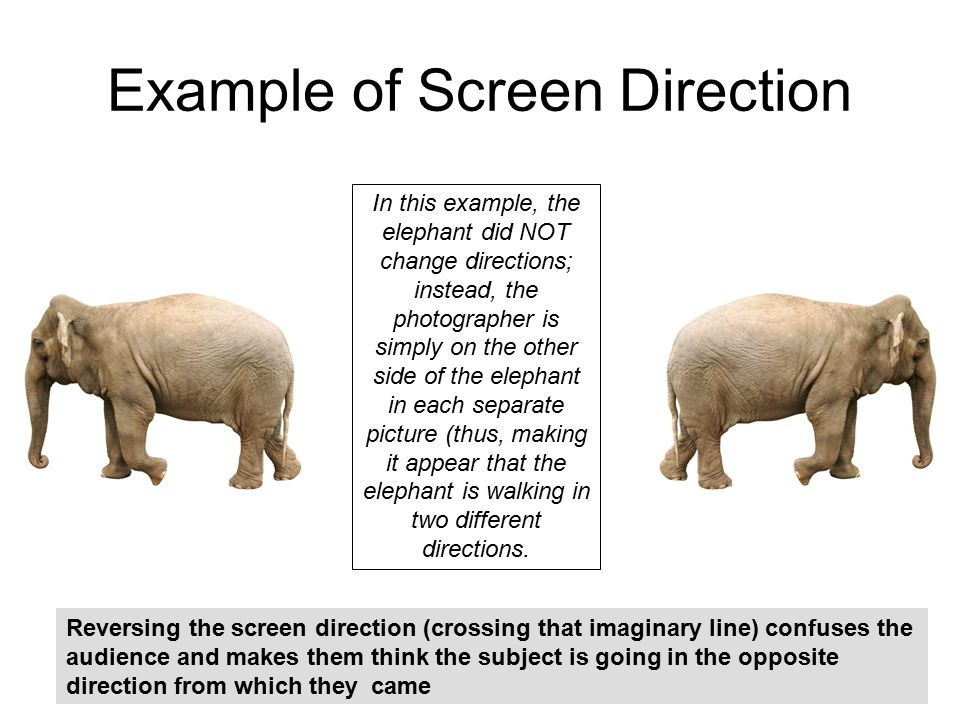 Example of Screen Direction