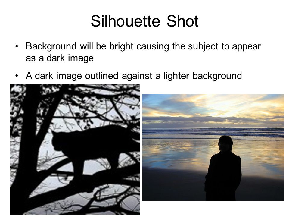 Silhouette Shot Background will be bright causing the subject to appear as a dark image.