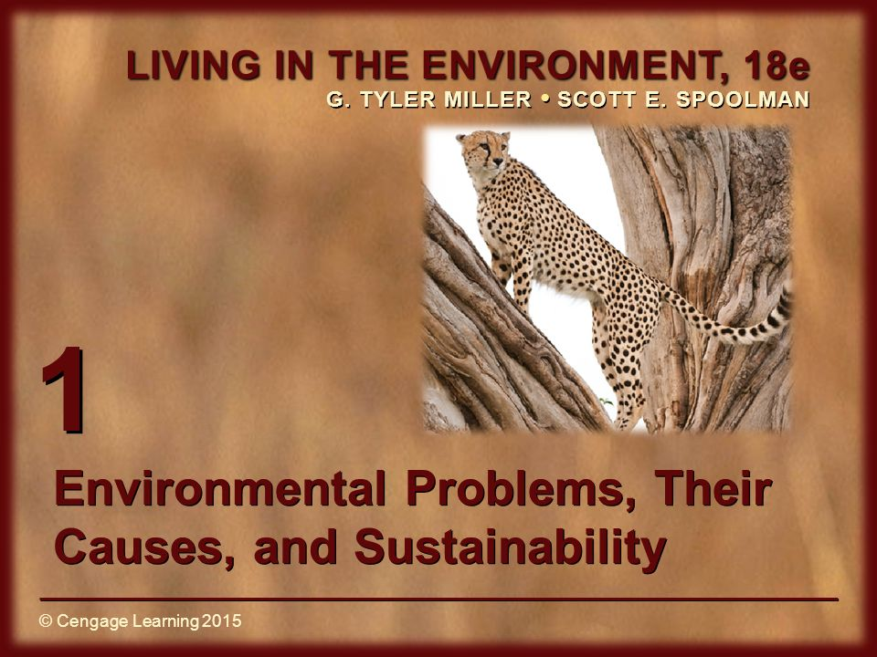 a review of the environmental issues their causes and sustainability Study environmental problems, their causes, and sustainability flashcards at proprofs - vocabulary of environmental science.