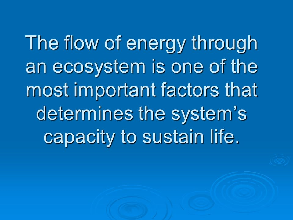 The flow of energy through an ecosystem is one of the most important factors that determines the system's capacity to sustain life.