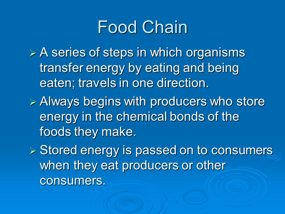 Food Chain A series of steps in which organisms transfer energy by eating and being eaten; travels in one direction.