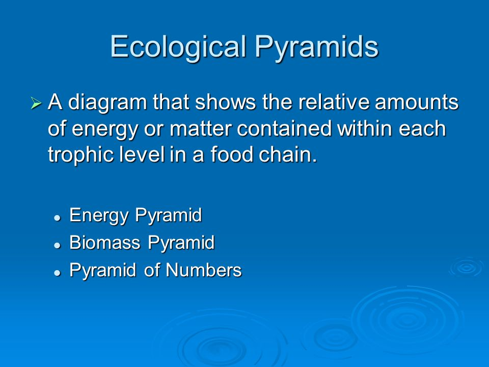 Ecological Pyramids A diagram that shows the relative amounts of energy or matter contained within each trophic level in a food chain.