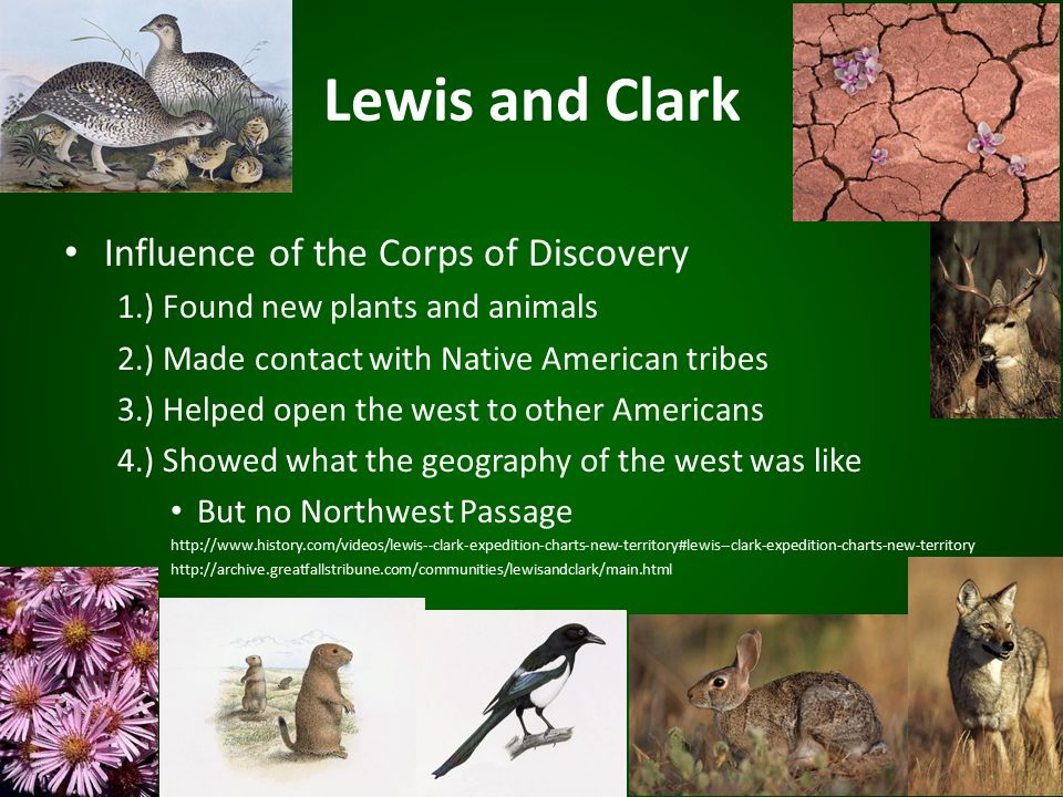going west the influence of the lewis and clark expedition Her importance to the expedition  lewis and clark were very happy to learn that charbonneau could  they will find her people here or just west on another.