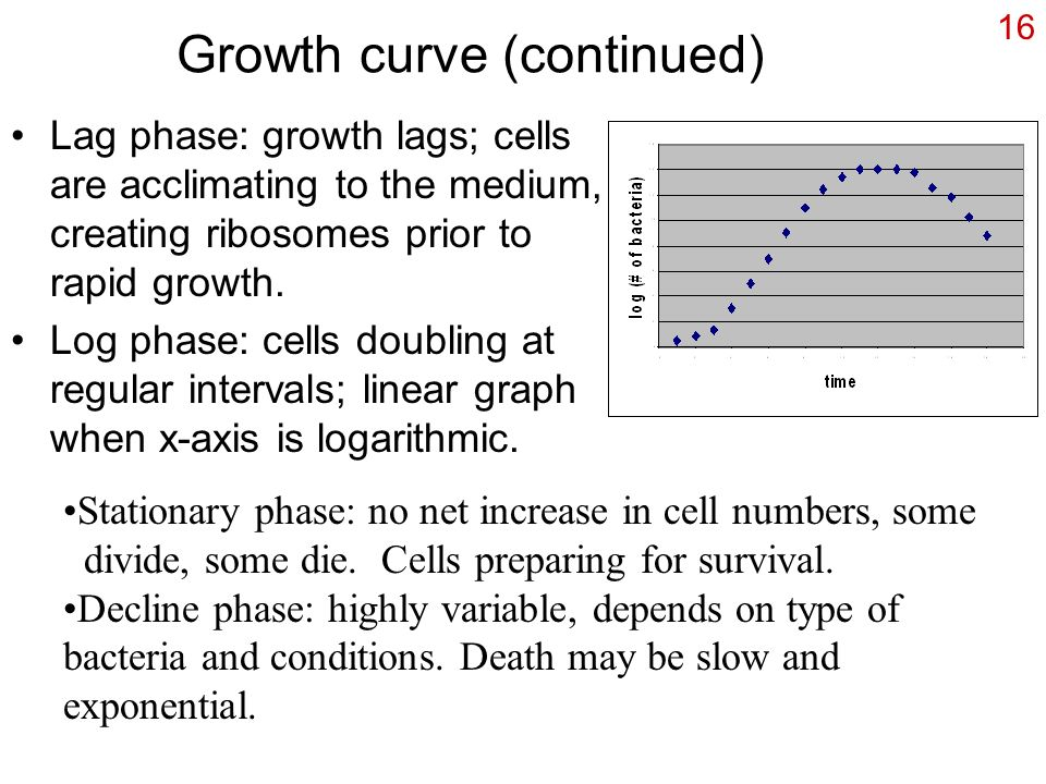 Growth curve (continued)