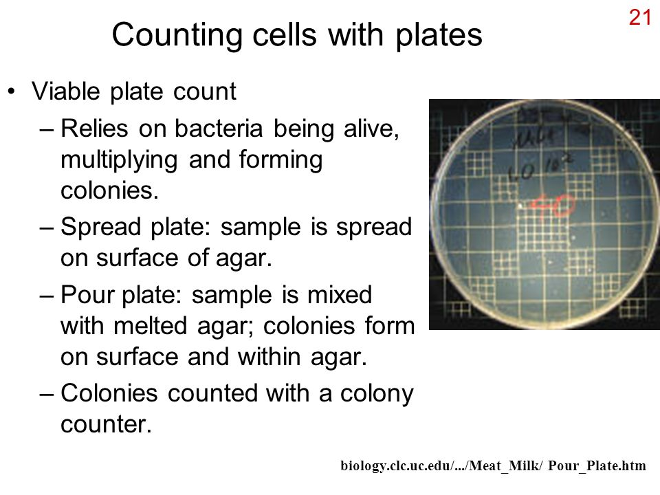 Counting cells with plates