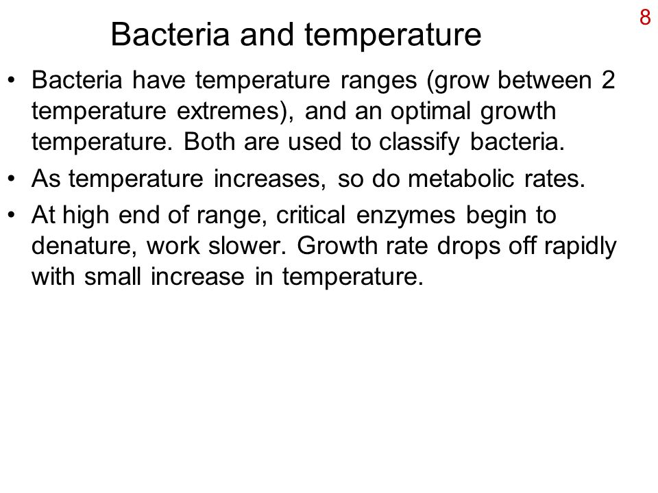 Bacteria and temperature