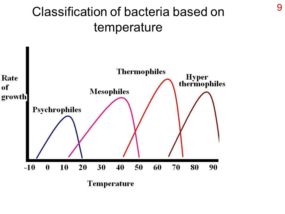 Classification of bacteria based on temperature