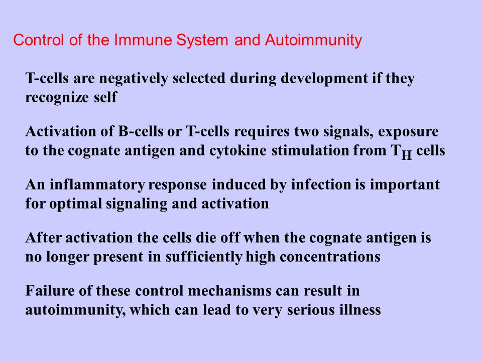 Control of the Immune System and Autoimmunity