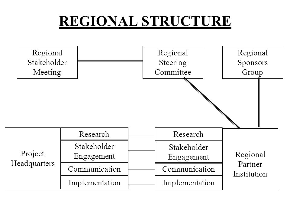 REGIONAL STRUCTURE Regional Stakeholder Meeting Regional Steering