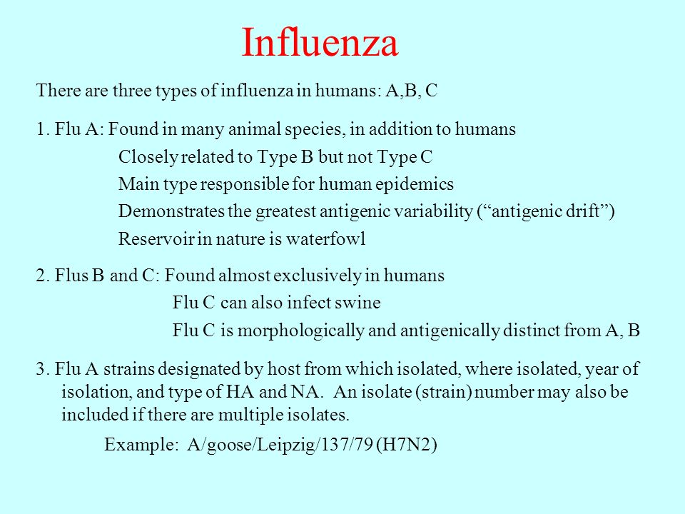 Influenza There are three types of influenza in humans: A,B, C