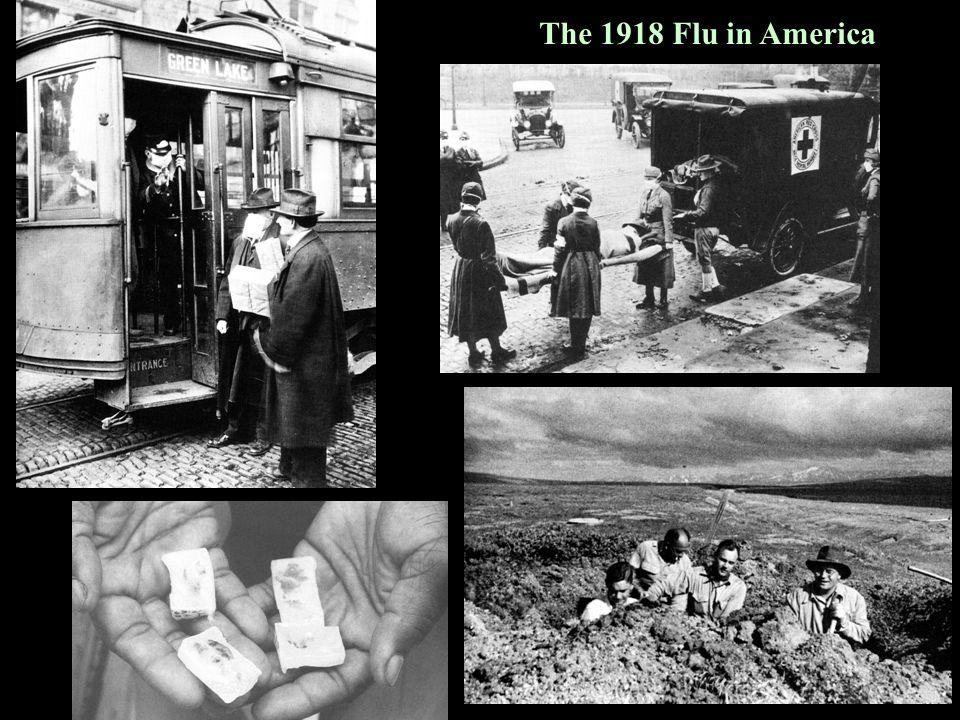 The 1918 Flu in America