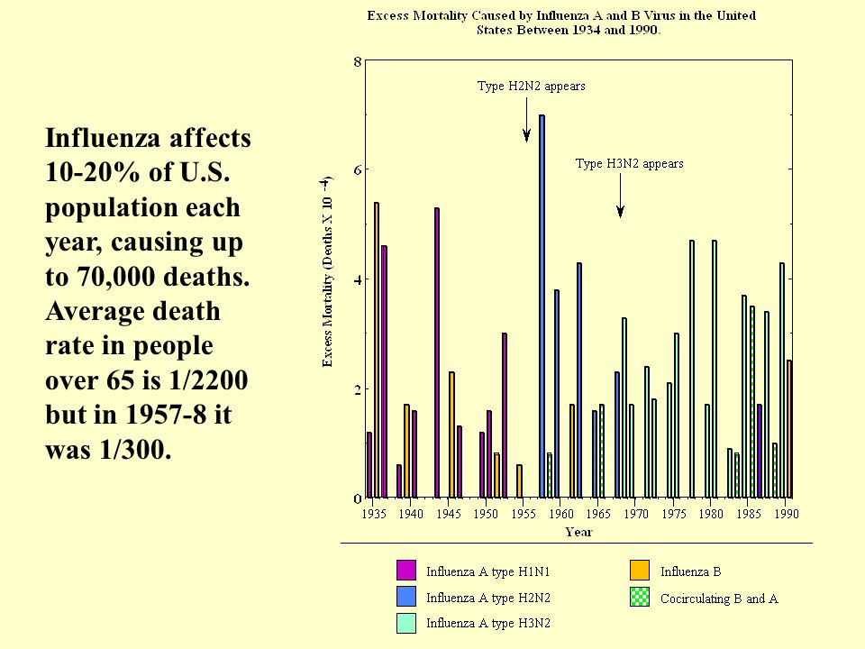 Influenza affects 10-20% of U. S