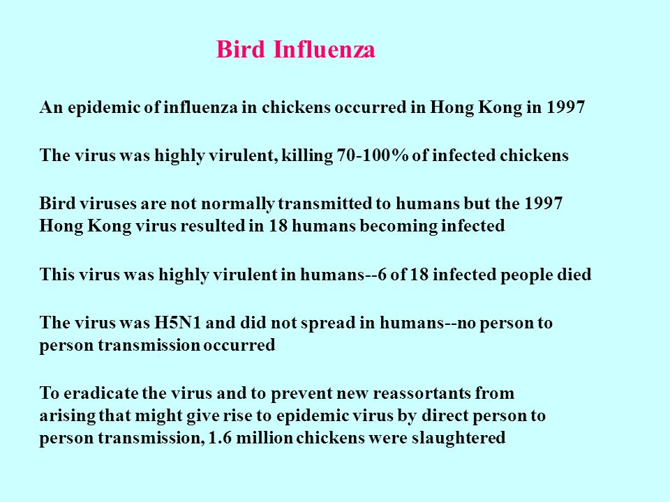 Bird Influenza An epidemic of influenza in chickens occurred in Hong Kong in 1997.