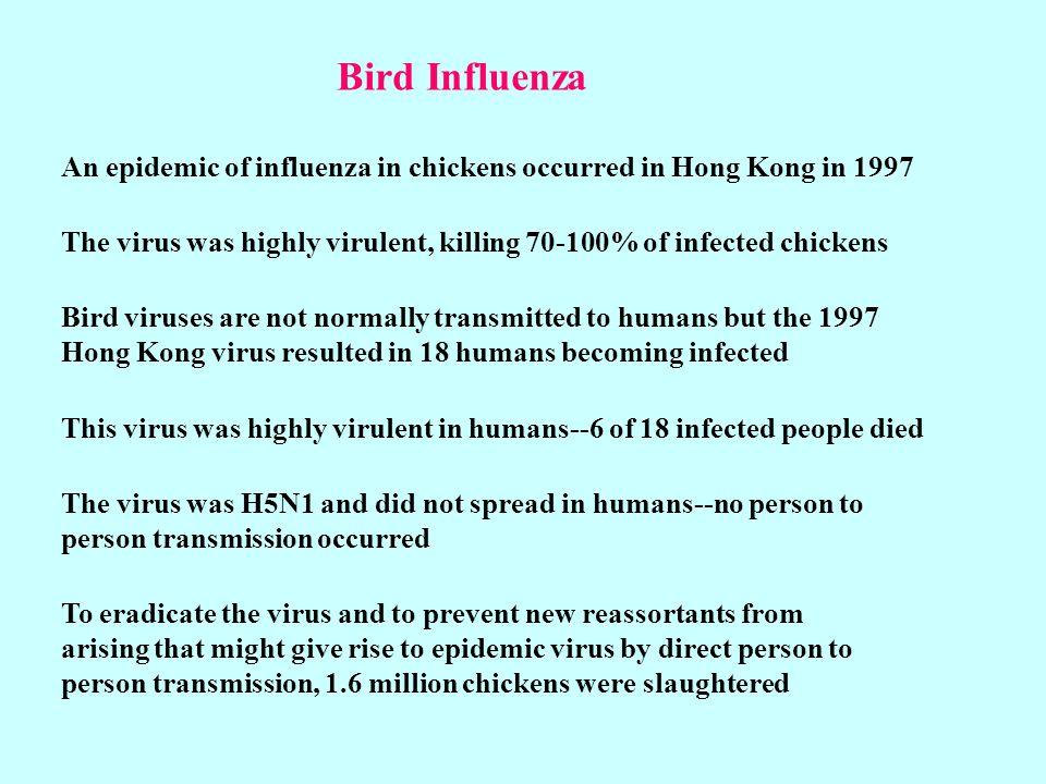 Bird InfluenzaAn epidemic of influenza in chickens occurred in Hong Kong in 1997.