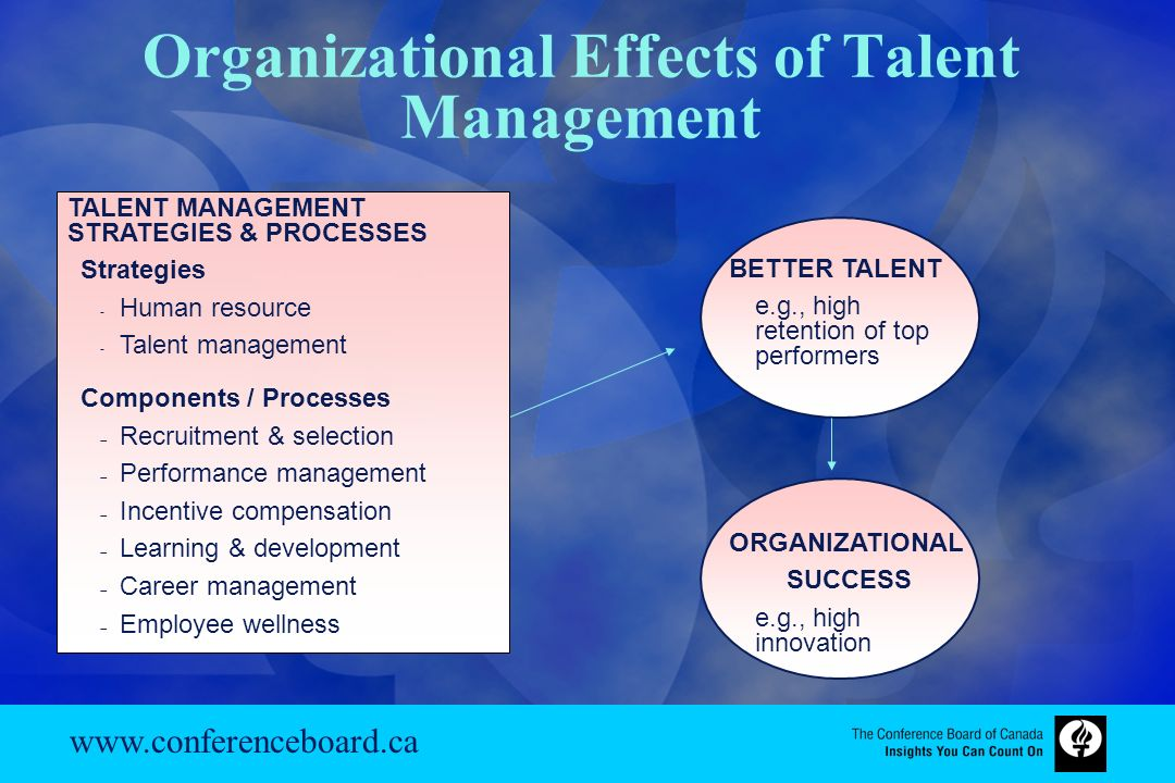 effects of organizational learning