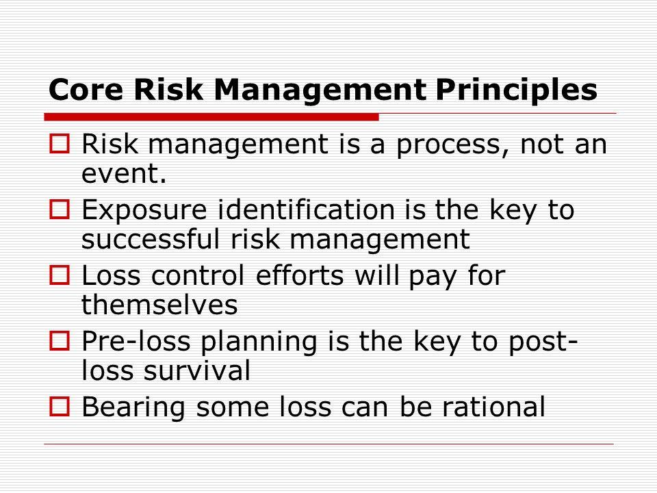 Core Risk Management Principles
