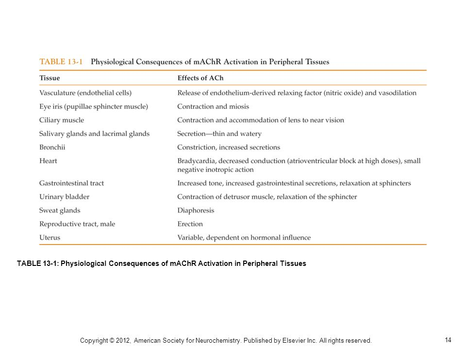 TABLE 13-1: Physiological Consequences of mAChR Activation in Peripheral Tissues
