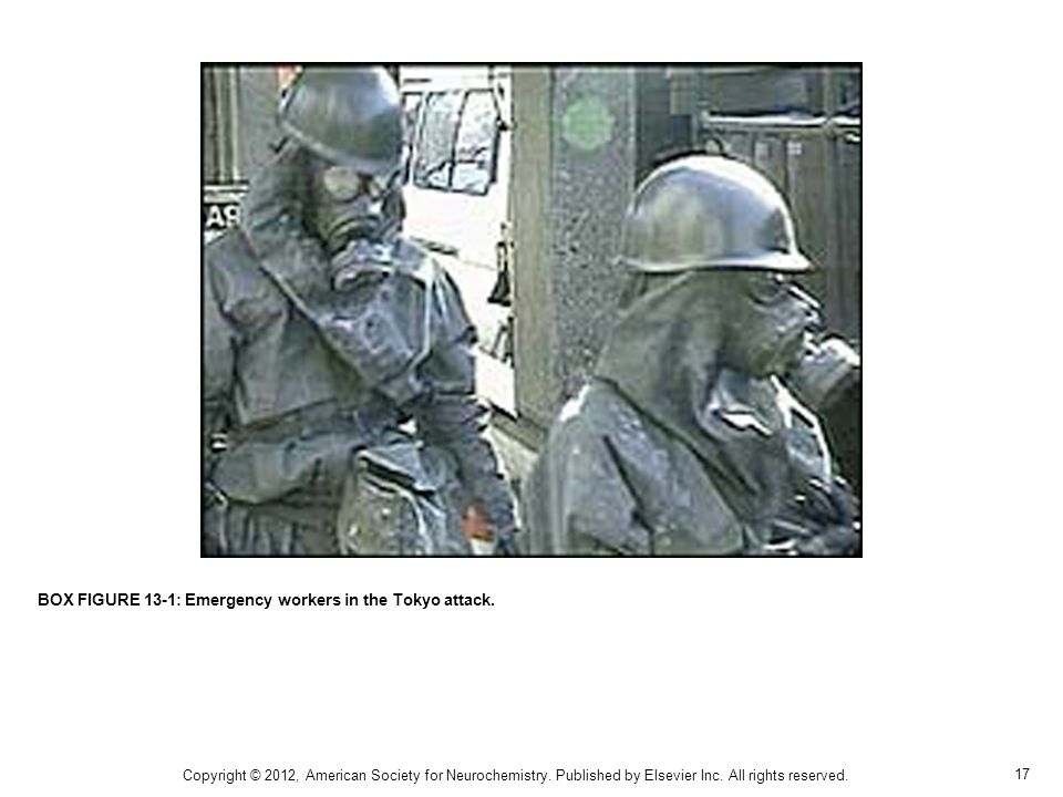BOX FIGURE 13-1: Emergency workers in the Tokyo attack.