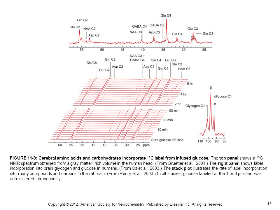 FIGURE 11-9: Cerebral amino acids and carbohydrates incorporate 13C label from infused glucose. The top panel shows a 13C NMR spectrum obtained from a gray matter–rich volume in the human head. (From Gruetter et al., 2001.) The right panel shows label incorporation into brain glycogen and glucose in humans. (From Öz et al., 2003.) The stack plot illustrates the rate of label incorporation into many compounds and carbons in the rat brain. (From Henry et al., 2003.) In all studies, glucose labeled at the 1 or 6 position was administered intravenously.