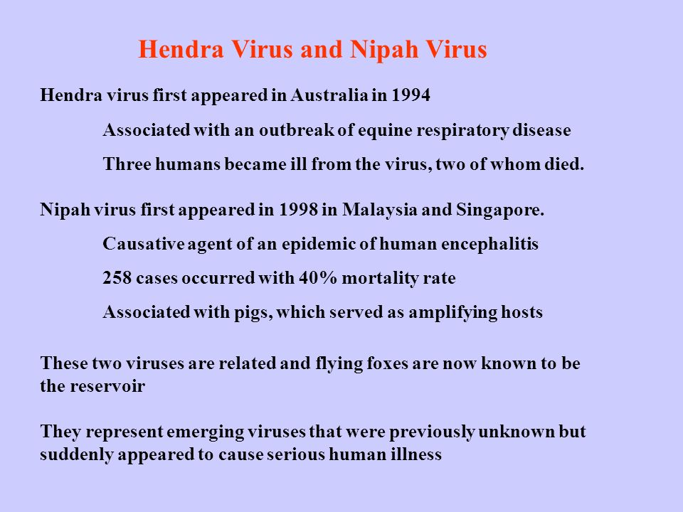 Hendra Virus and Nipah Virus