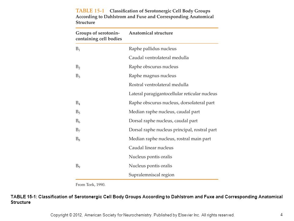 TABLE 15-1: Classification of Serotonergic Cell Body Groups According to Dahlstrom and Fuxe and Corresponding Anatomical