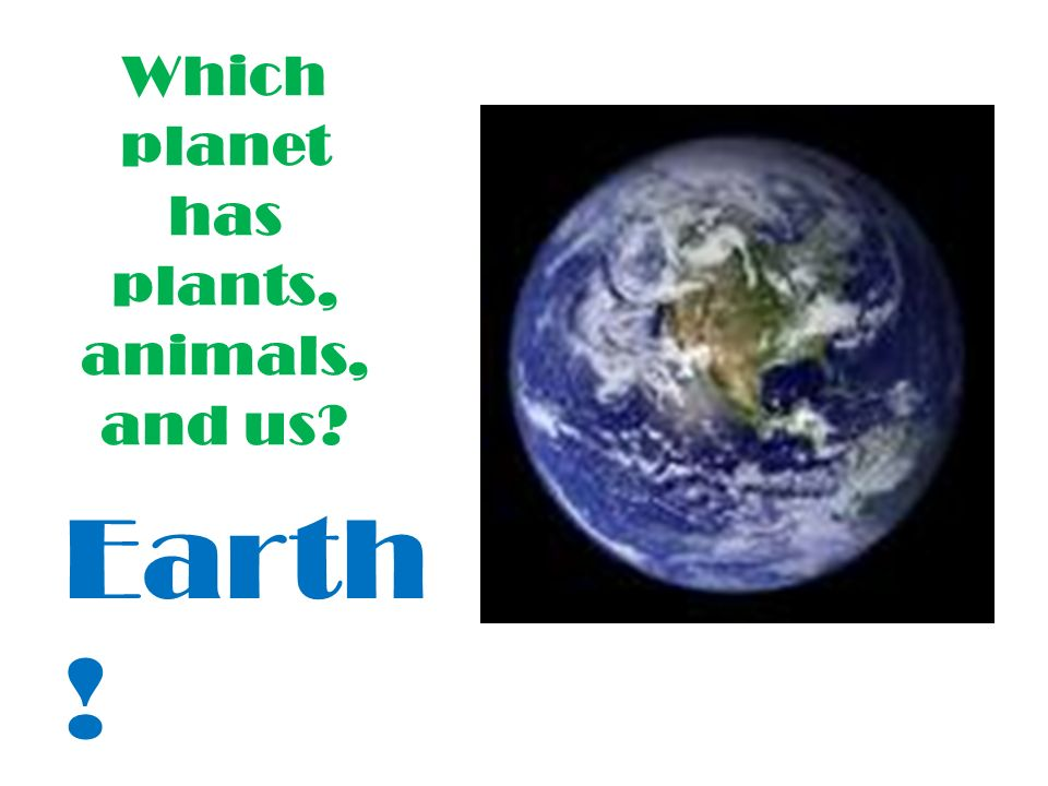 Which planet has plants, animals, and us