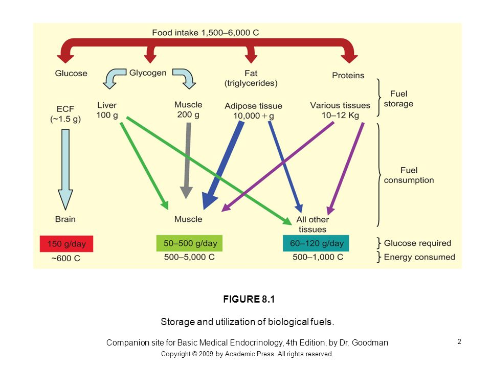 Storage and utilization of biological fuels.