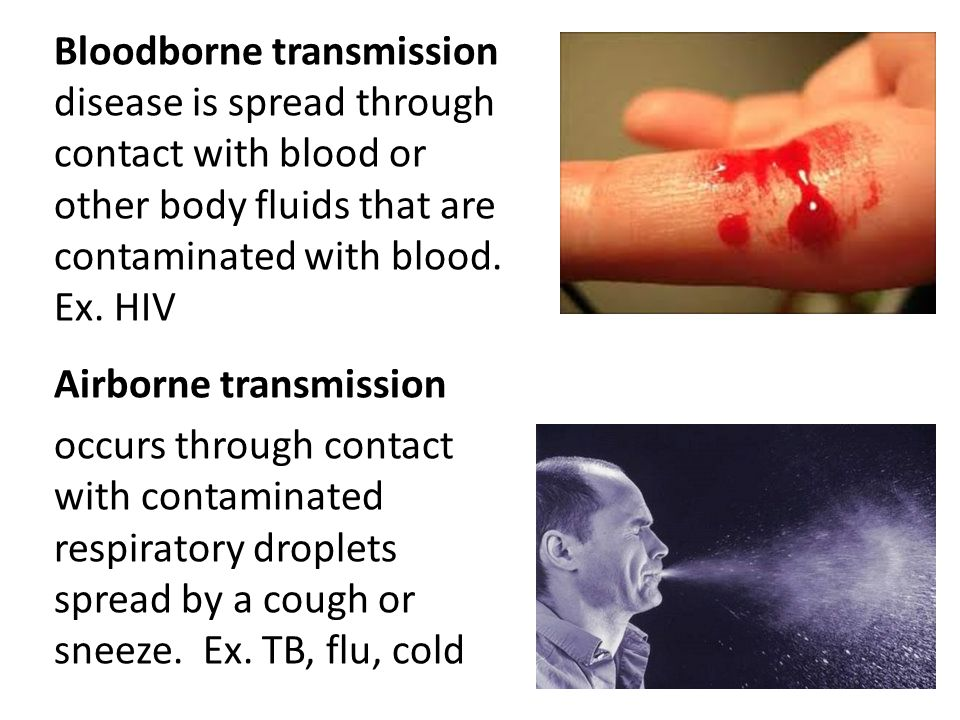 blood borne pathogens and disease transmission Epidemiology of communicable diseases & bloodborne pathogens priyal shah, mph epidemiologist  •mode of transmission – direct contact with the saliva of an  common bloodborne pathogens diseases •hepatitis b(hbv) •hepatitis c(hcv.