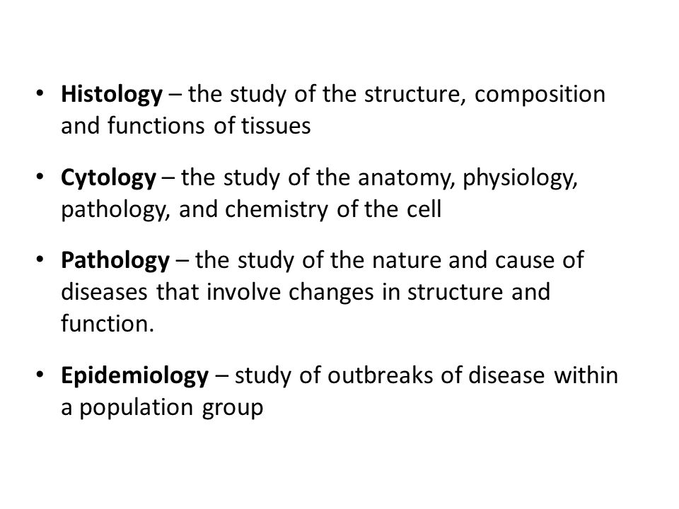 Gemütlich Study Of Anatomy Physiology Pathology And Chemistry Bilder ...