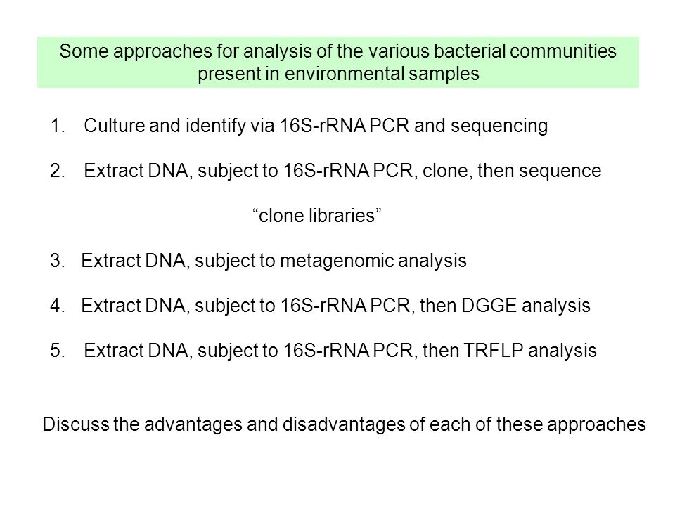Some approaches for analysis of the various bacterial communities present in environmental samples