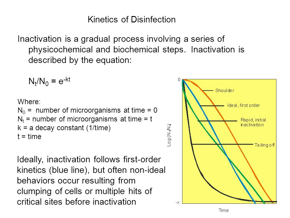 Kinetics of Disinfection