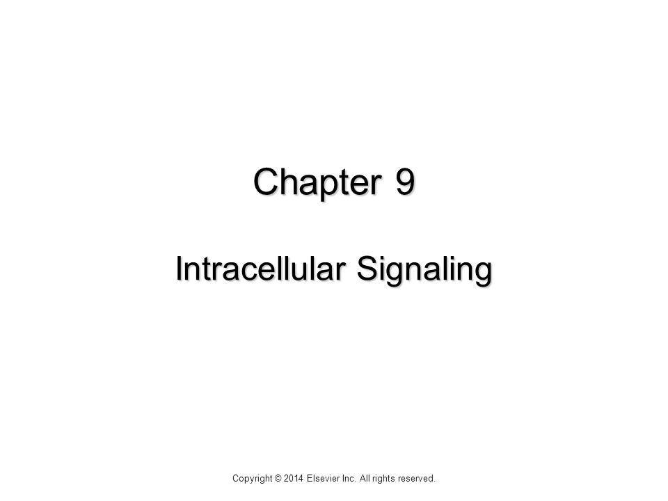 Chapter 9 Intracellular Signaling